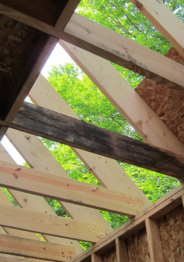 Rafters with mold